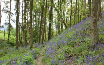 Plan your own Pilgrimages to Myddelton Grange